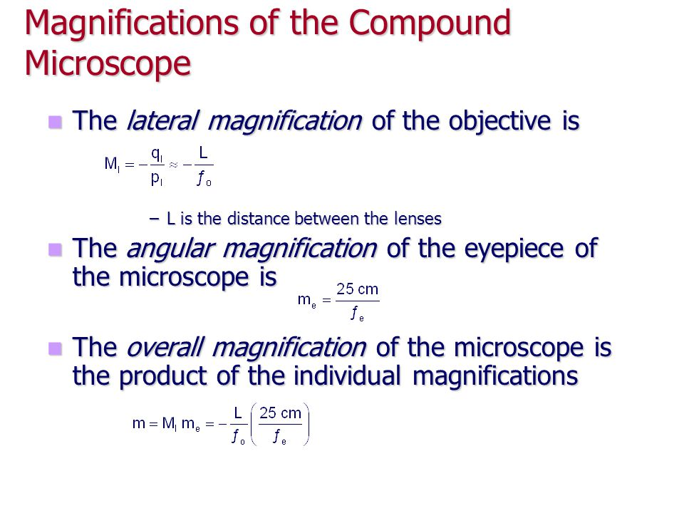 Magnifications of the Compound Microscope