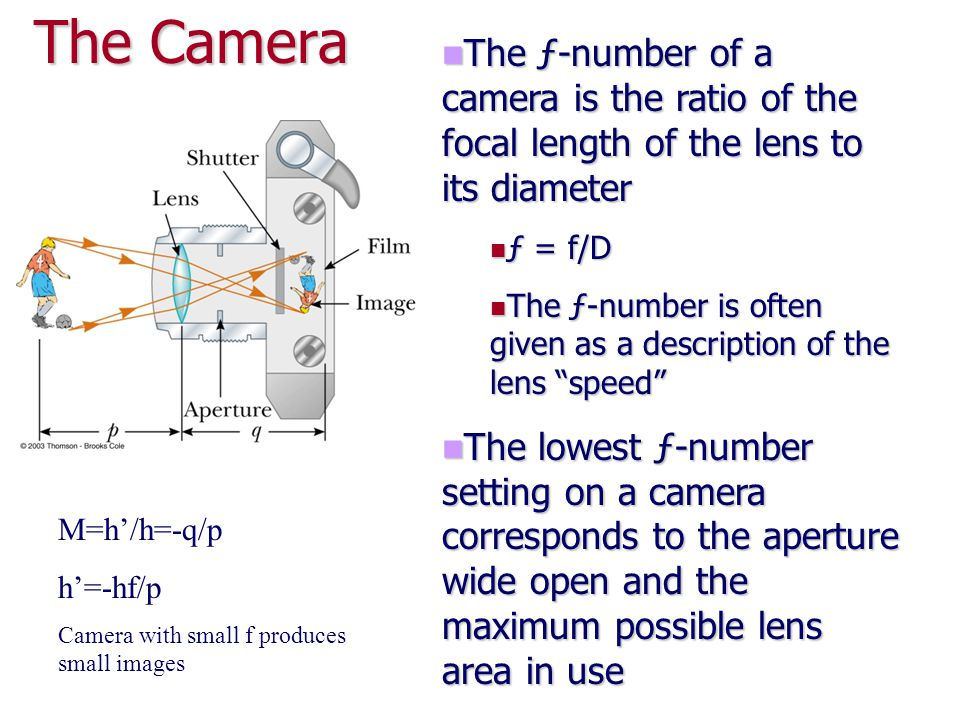 The Camera The ƒ-number of a camera is the ratio of the focal length of the lens to its diameter. ƒ = f/D.