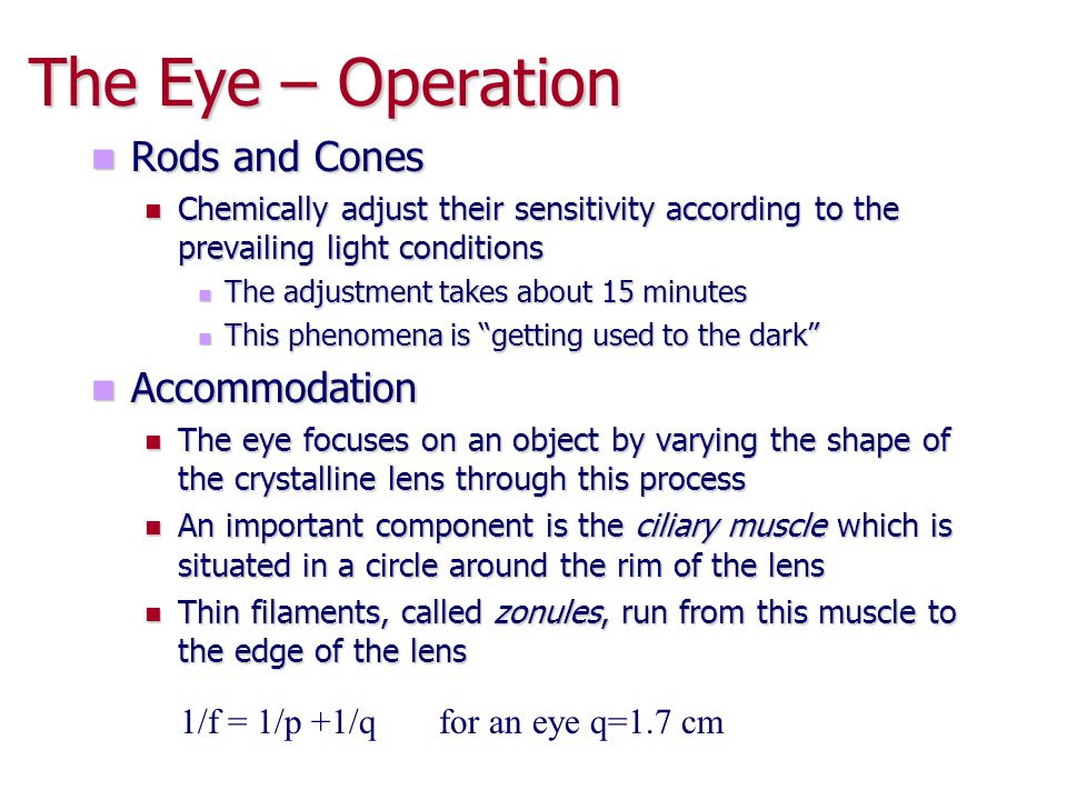 The Eye – Operation Rods and Cones Accommodation