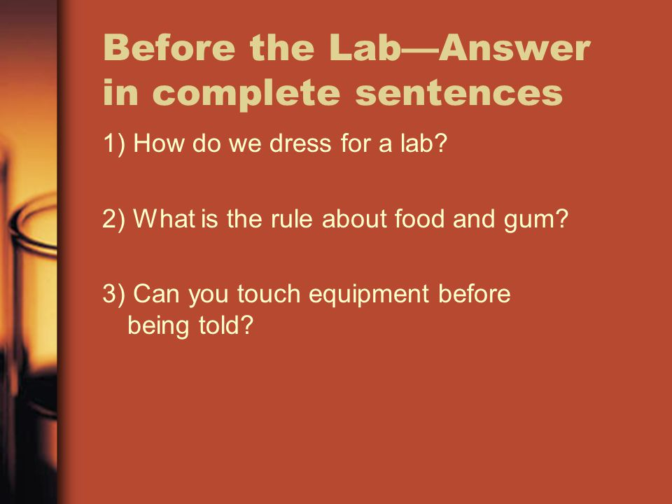 Before the Lab—Answer in complete sentences
