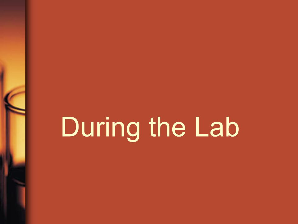 During the Lab