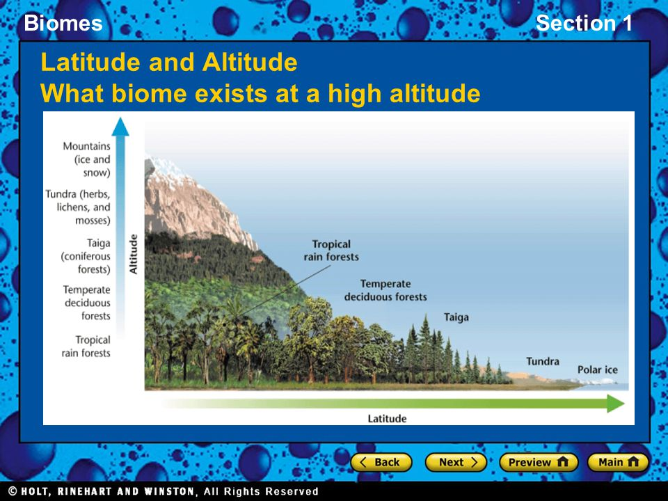 Latitude and Altitude What biome exists at a high altitude