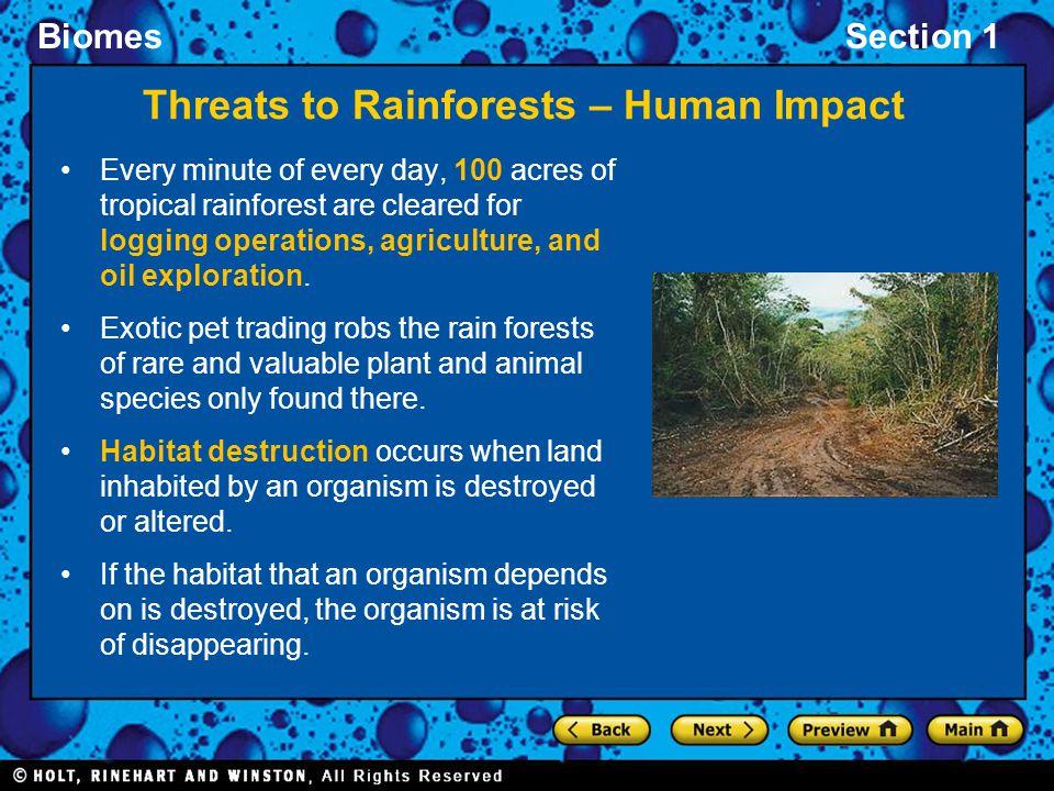 Threats to Rainforests – Human Impact