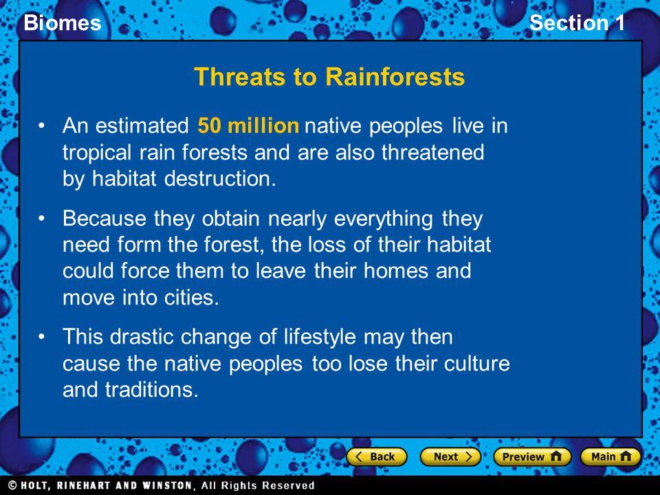 Threats to Rainforests