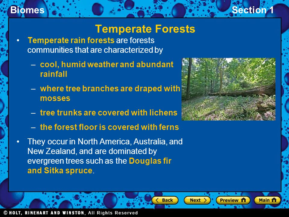 Temperate Forests Temperate rain forests are forests communities that are characterized by. cool, humid weather and abundant rainfall.