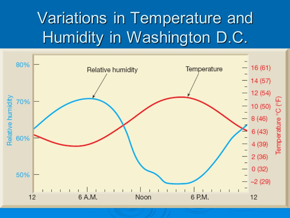 Variations in Temperature and Humidity in Washington D.C.