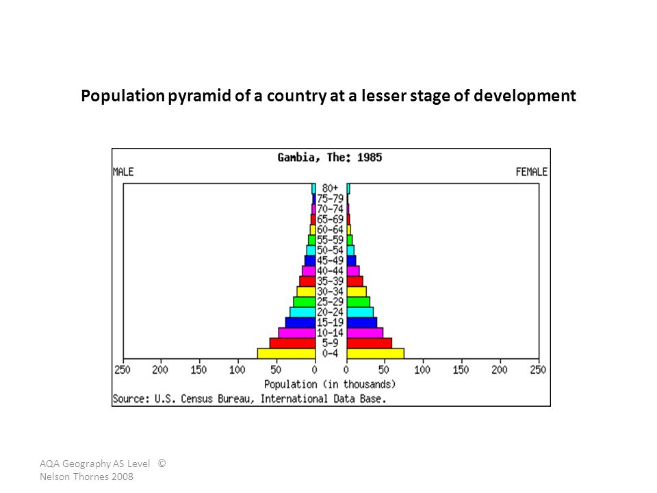 Population pyramid of a country at a lesser stage of development
