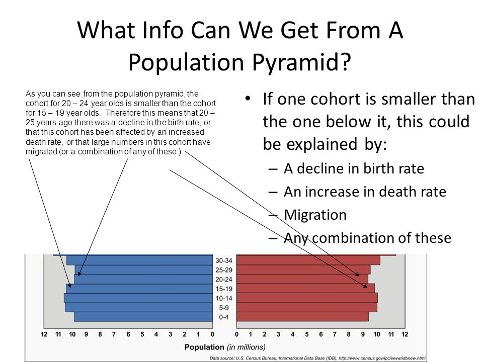 What Info Can We Get From A Population Pyramid