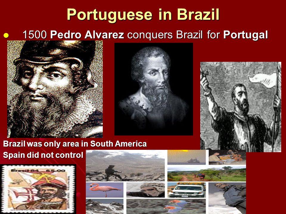 Portuguese in Brazil 1500 Pedro Alvarez conquers Brazil for Portugal