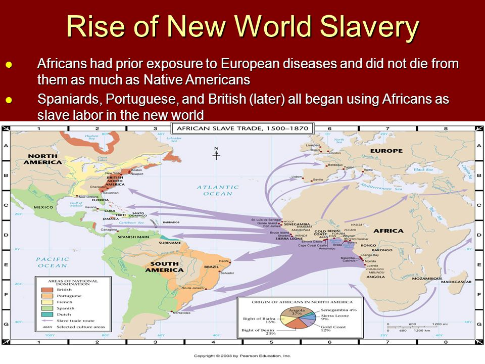 Rise of New World Slavery