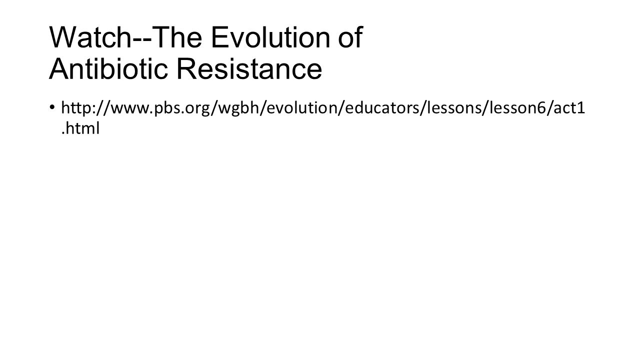 Watch--The Evolution of Antibiotic Resistance