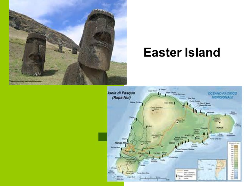 easter island essay Easter island's end by jared diamond, in discover magazine august 1995 in  just a few centuries, the people of easter island wiped out their forest, drove their .