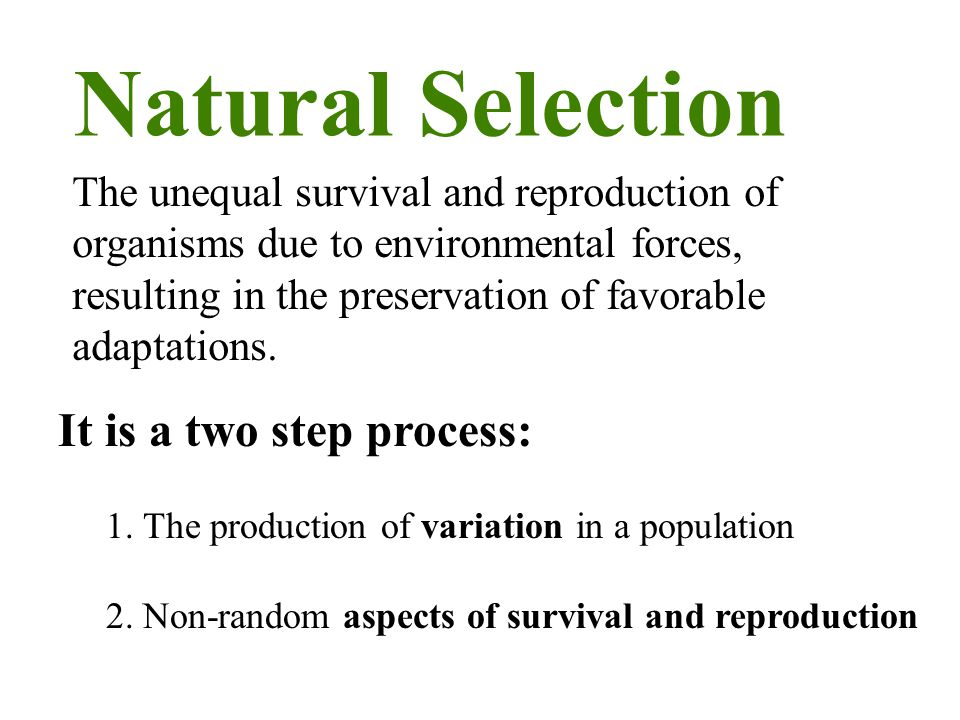 Natural Selection It is a two step process: