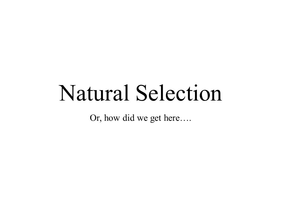 Natural Selection Or, how did we get here….