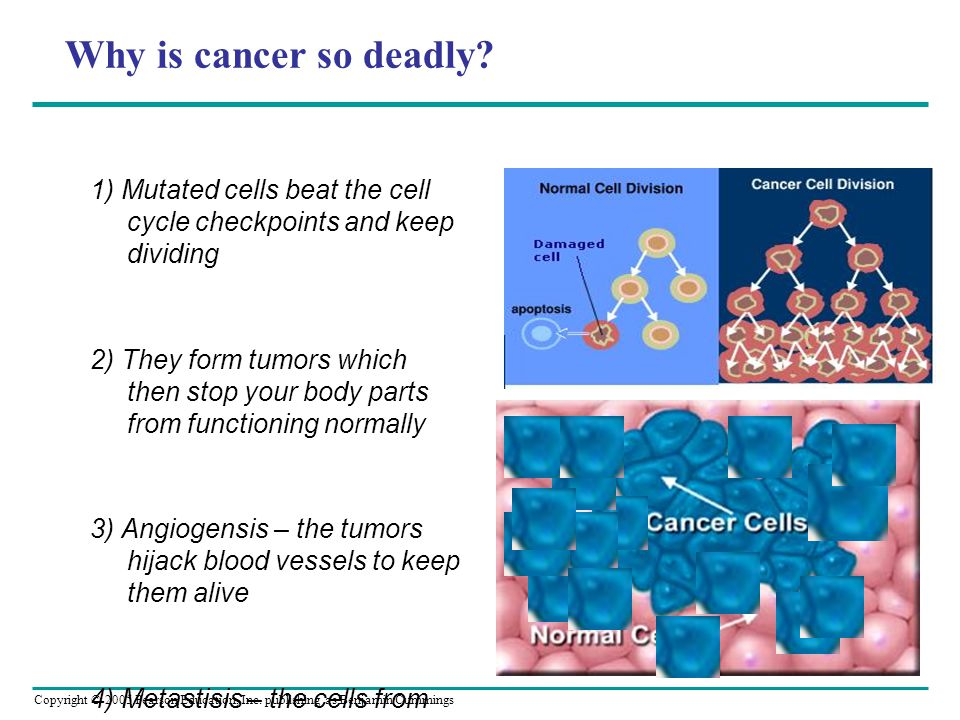 Why is cancer so deadly *