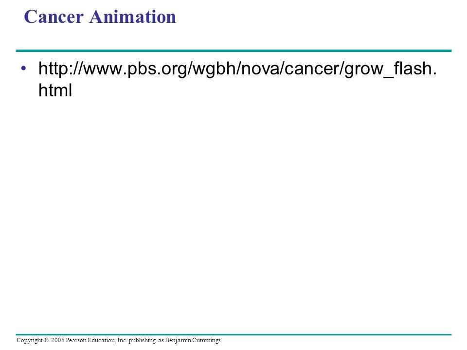 Cancer Animation http://www.pbs.org/wgbh/nova/cancer/grow_flash.html