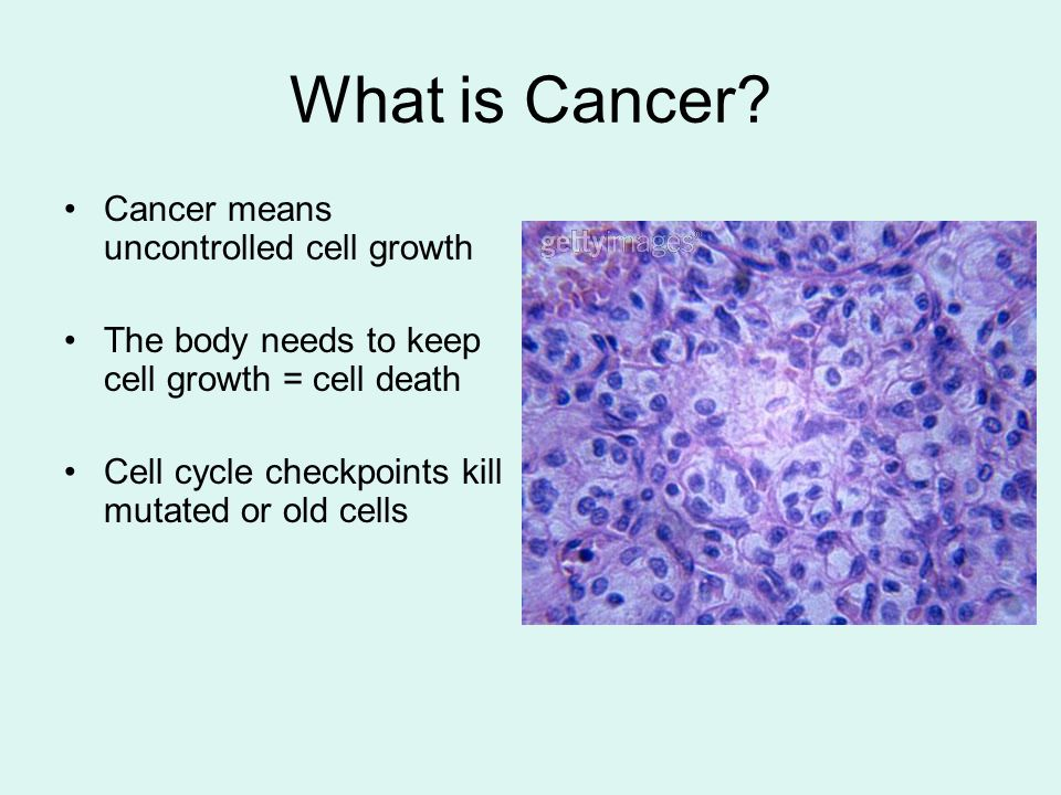 What is Cancer Cancer means uncontrolled cell growth