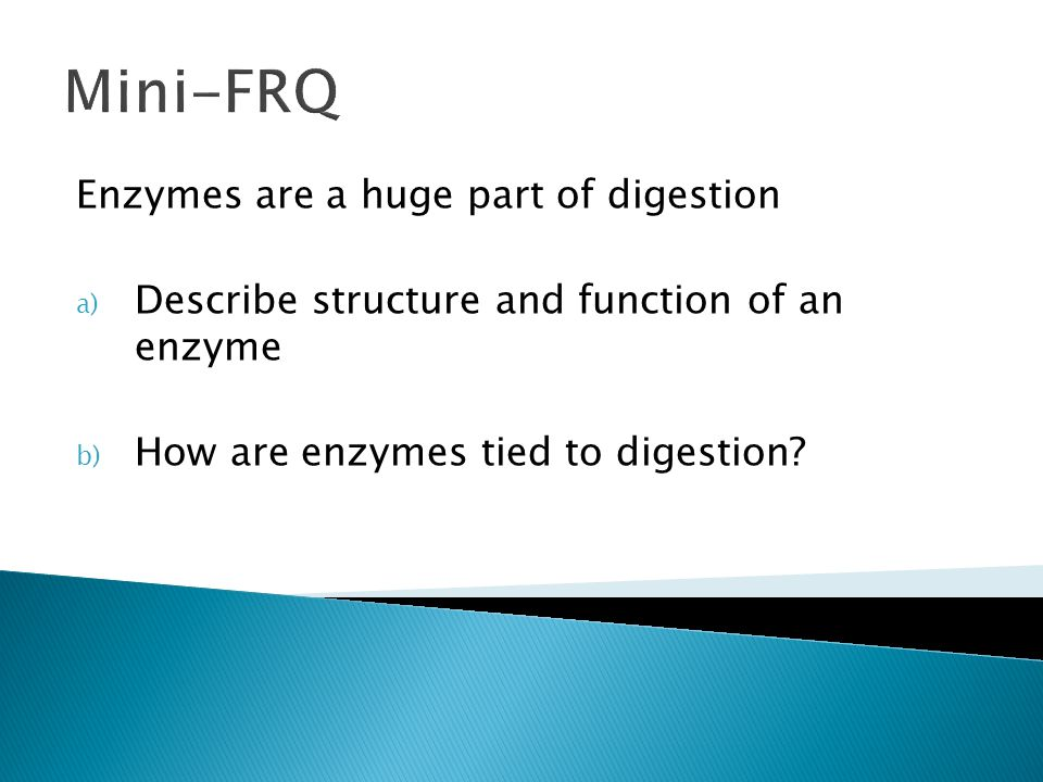 Mini-FRQ Enzymes are a huge part of digestion
