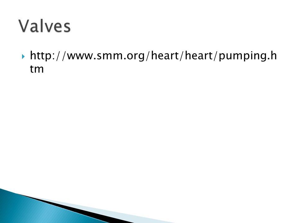Valves http://www.smm.org/heart/heart/pumping.h tm