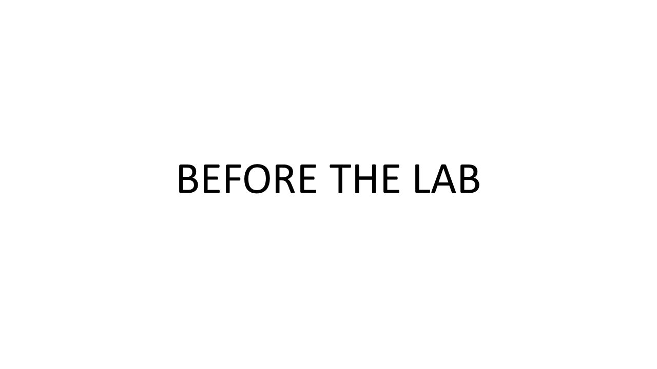 BEFORE THE LAB