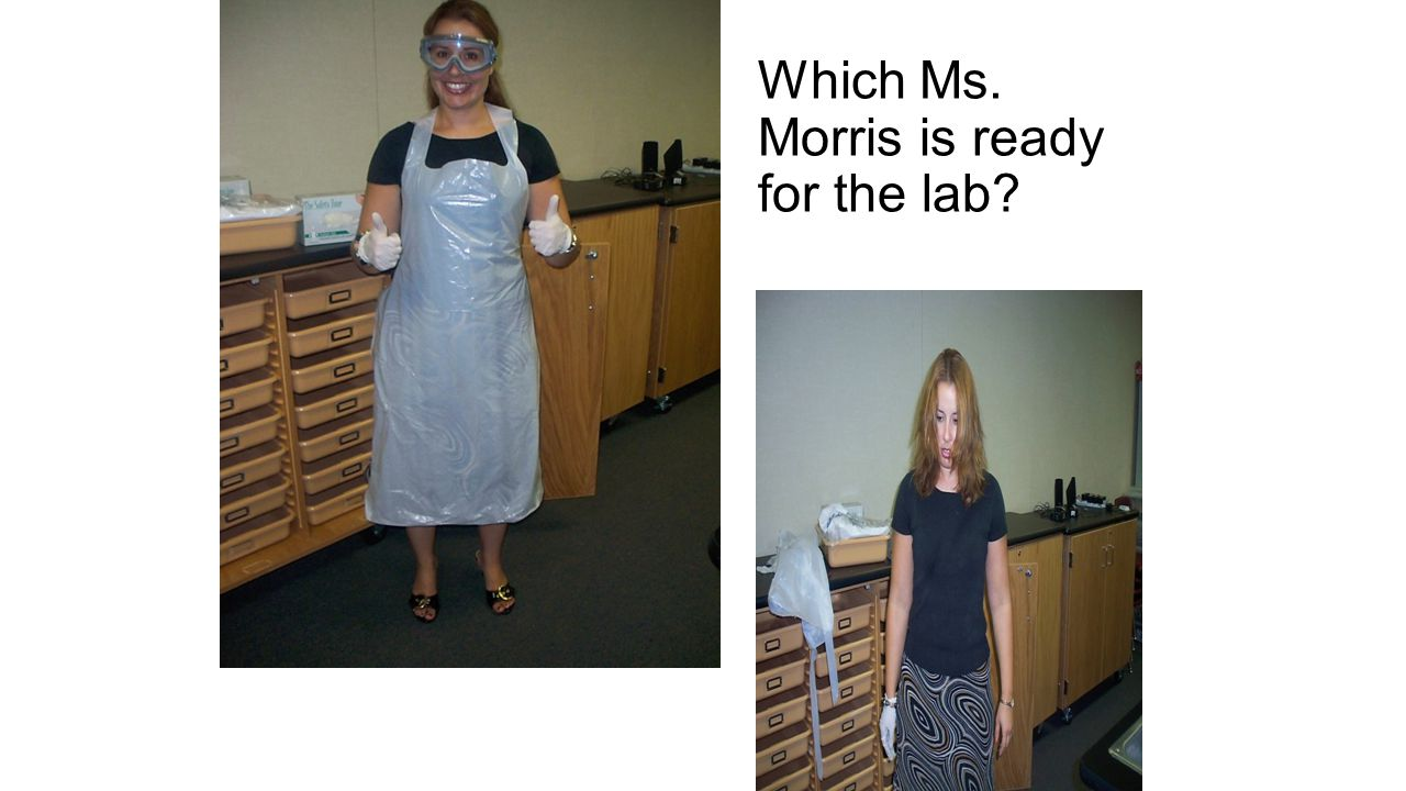 Which Ms. Morris is ready for the lab