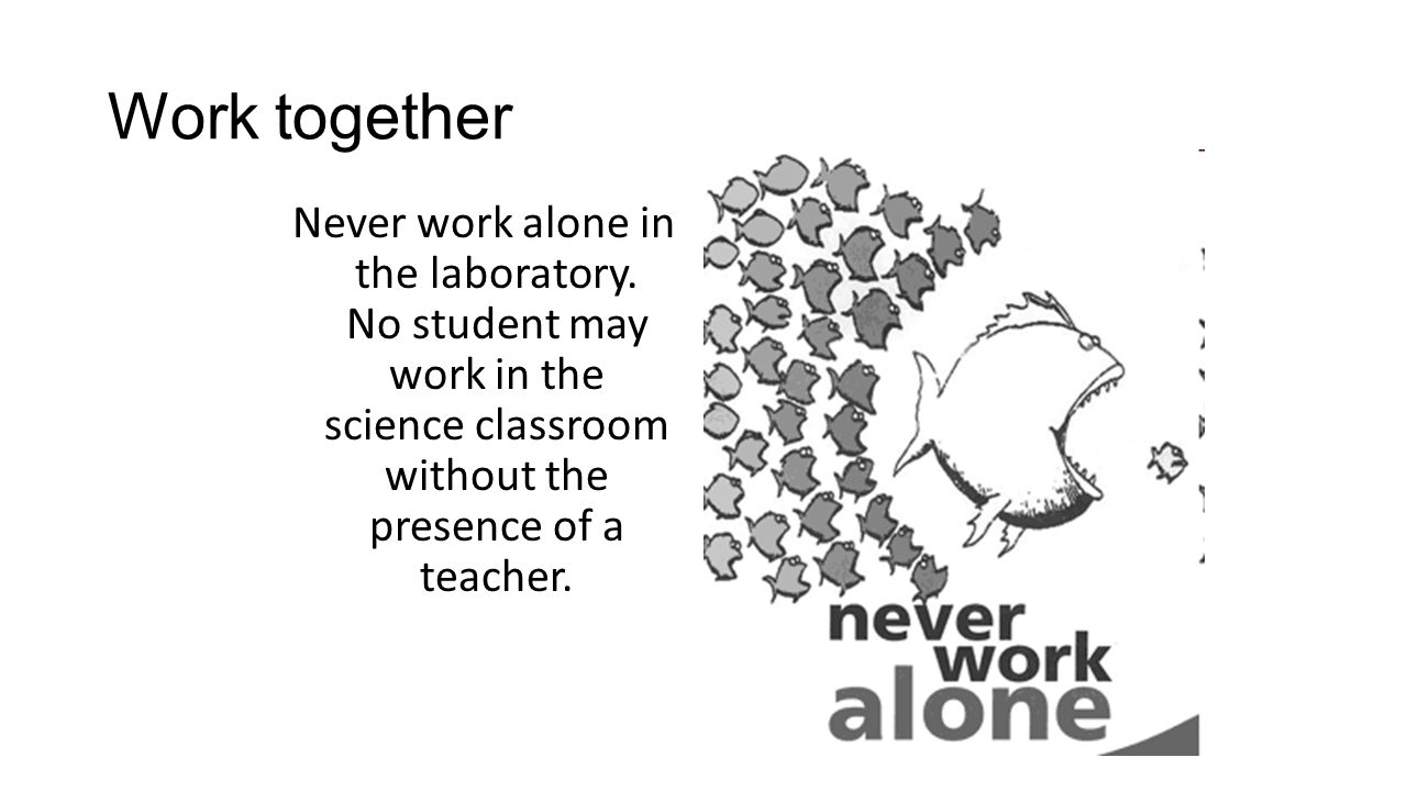 Work together Never work alone in the laboratory.
