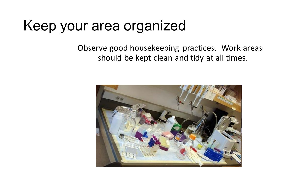 Keep your area organized