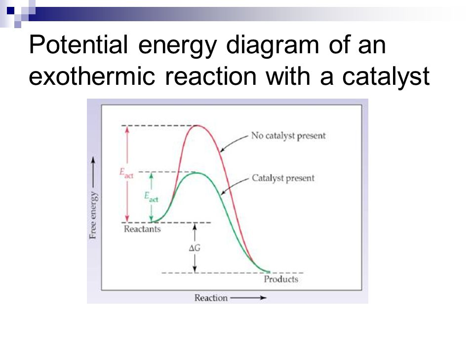 Potential energy diagram of an exothermic reaction with a catalyst