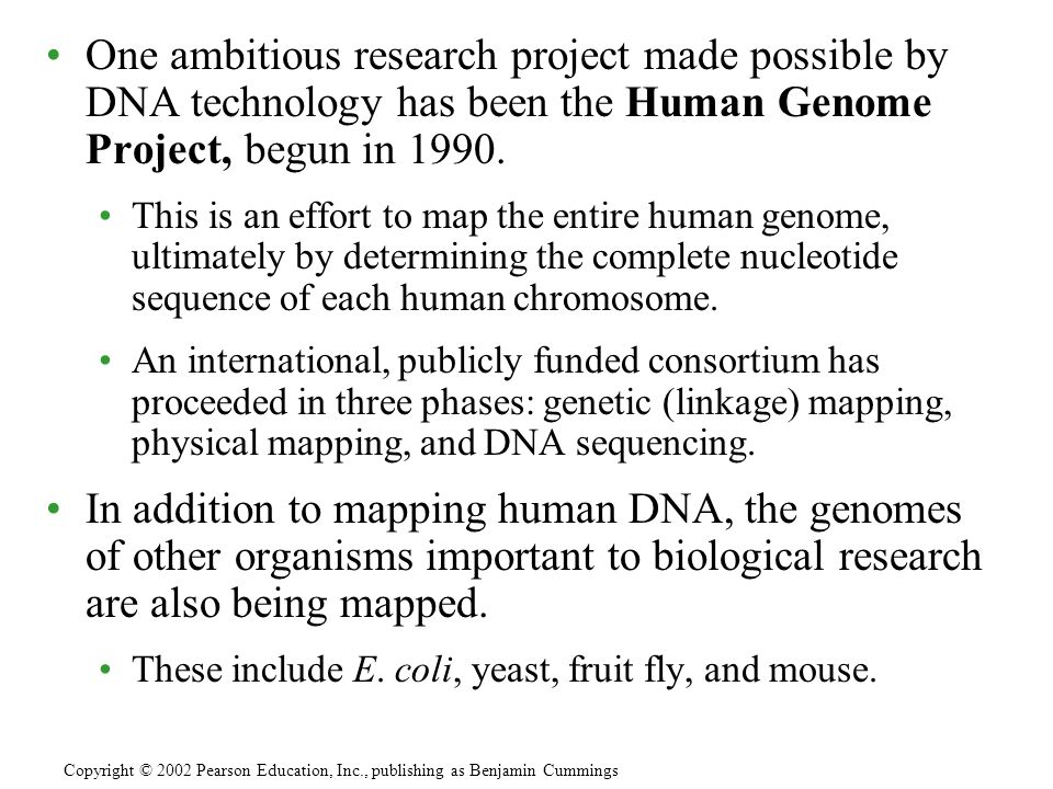One ambitious research project made possible by DNA technology has been the Human Genome Project, begun in 1990.