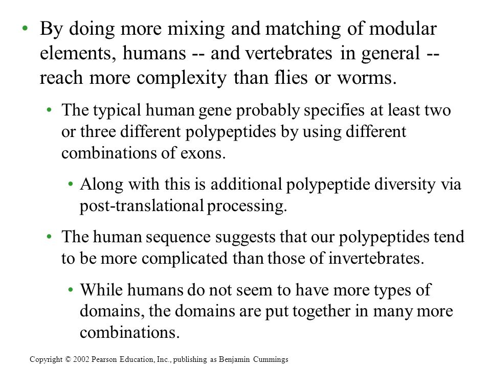 By doing more mixing and matching of modular elements, humans -- and vertebrates in general -- reach more complexity than flies or worms.