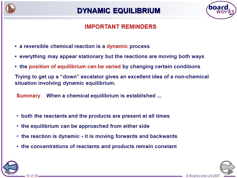 DYNAMIC EQUILIBRIUM IMPORTANT REMINDERS