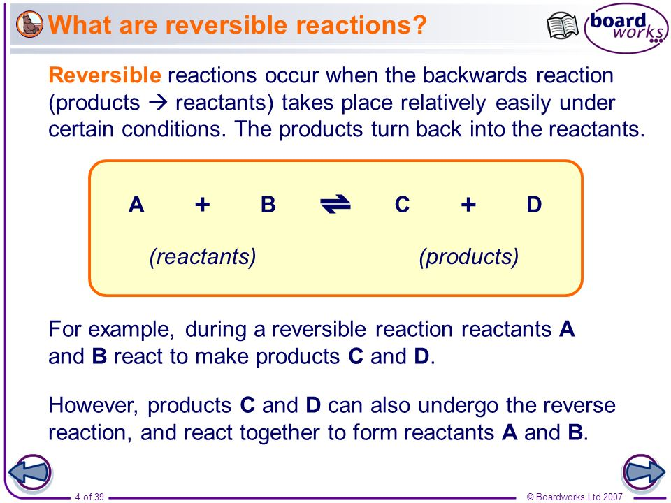 What are reversible reactions