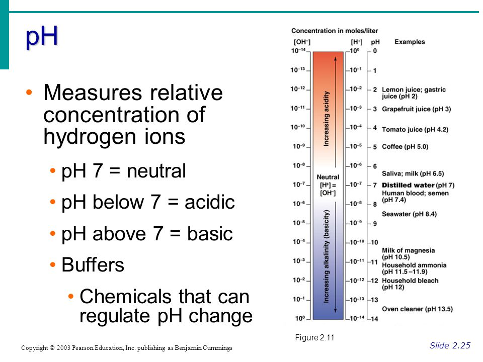 pH Measures relative concentration of hydrogen ions pH 7 = neutral