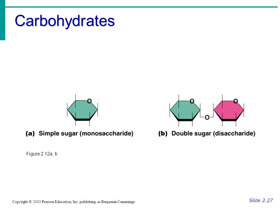Carbohydrates Figure 2.12a, b Slide 2.27