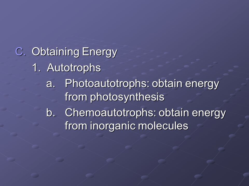 Obtaining Energy 1. Autotrophs. a. Photoautotrophs: obtain energy from photosynthesis.