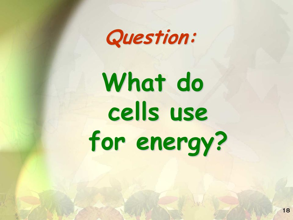 What do cells use for energy