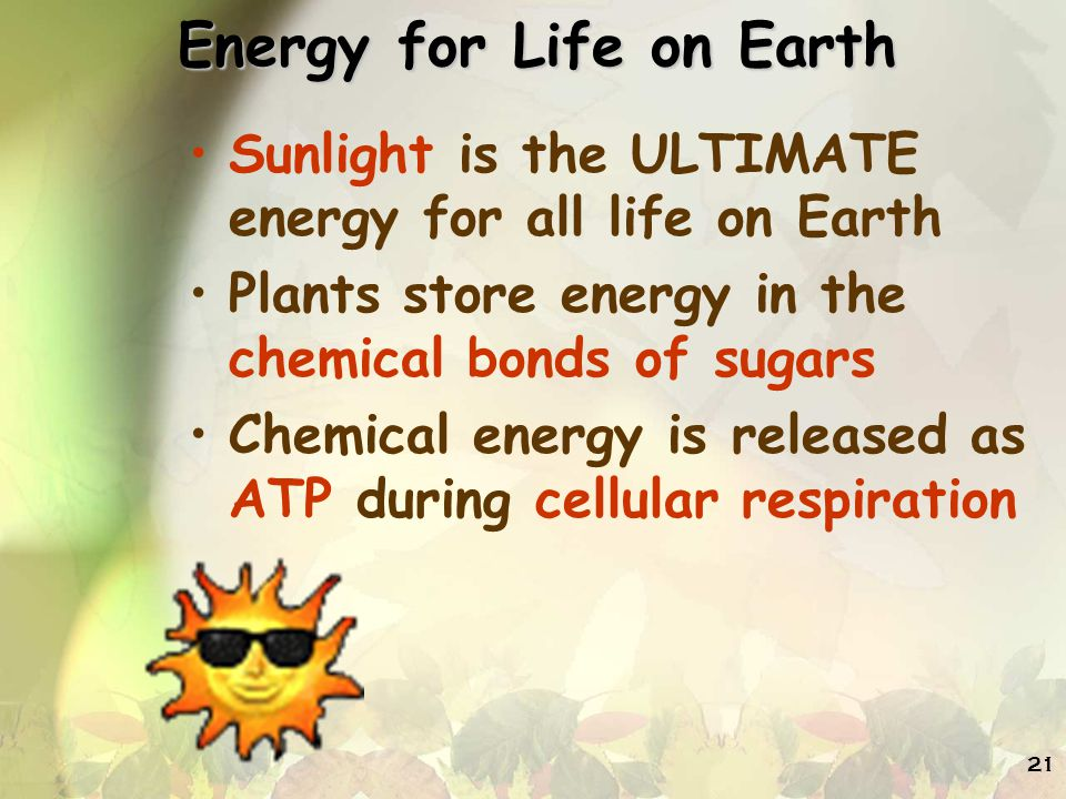 Energy for Life on Earth