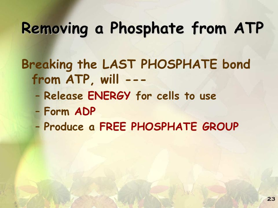 Removing a Phosphate from ATP