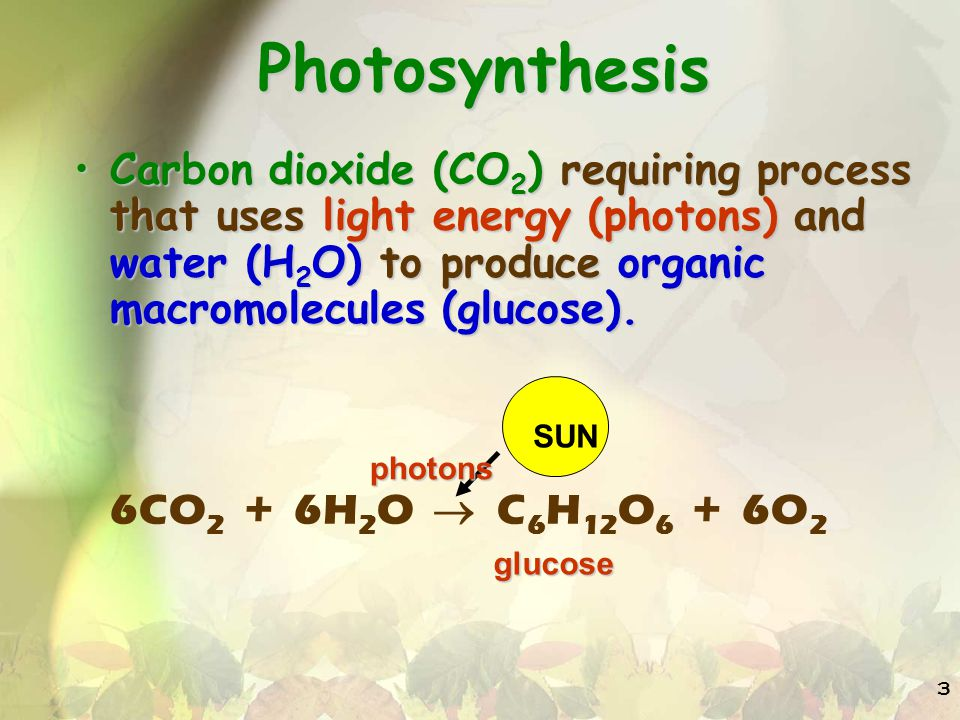 Photosynthesis Carbon dioxide (CO2) requiring process that uses light energy (photons) and water (H2O) to produce organic macromolecules (glucose).