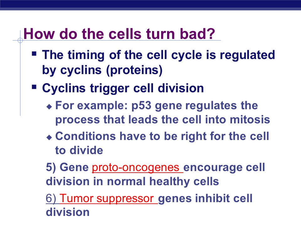How do the cells turn bad
