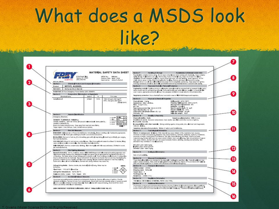 What does a MSDS look like