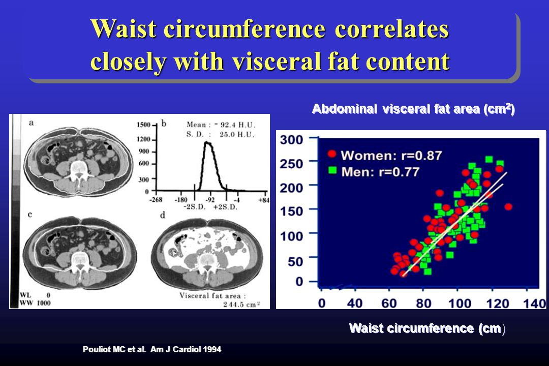 Waist circumference correlates closely with visceral fat content