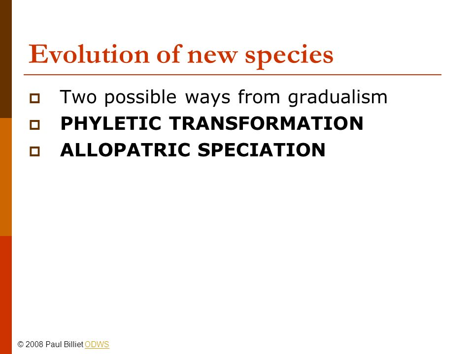 Evolution of new species