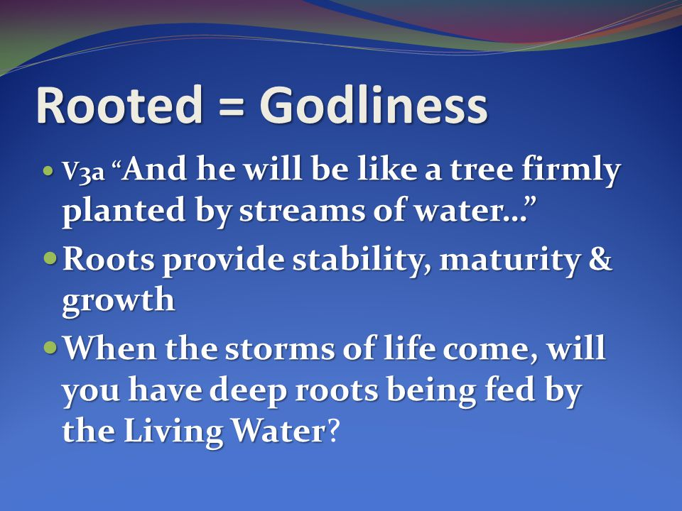 Rooted = Godliness Roots provide stability, maturity & growth