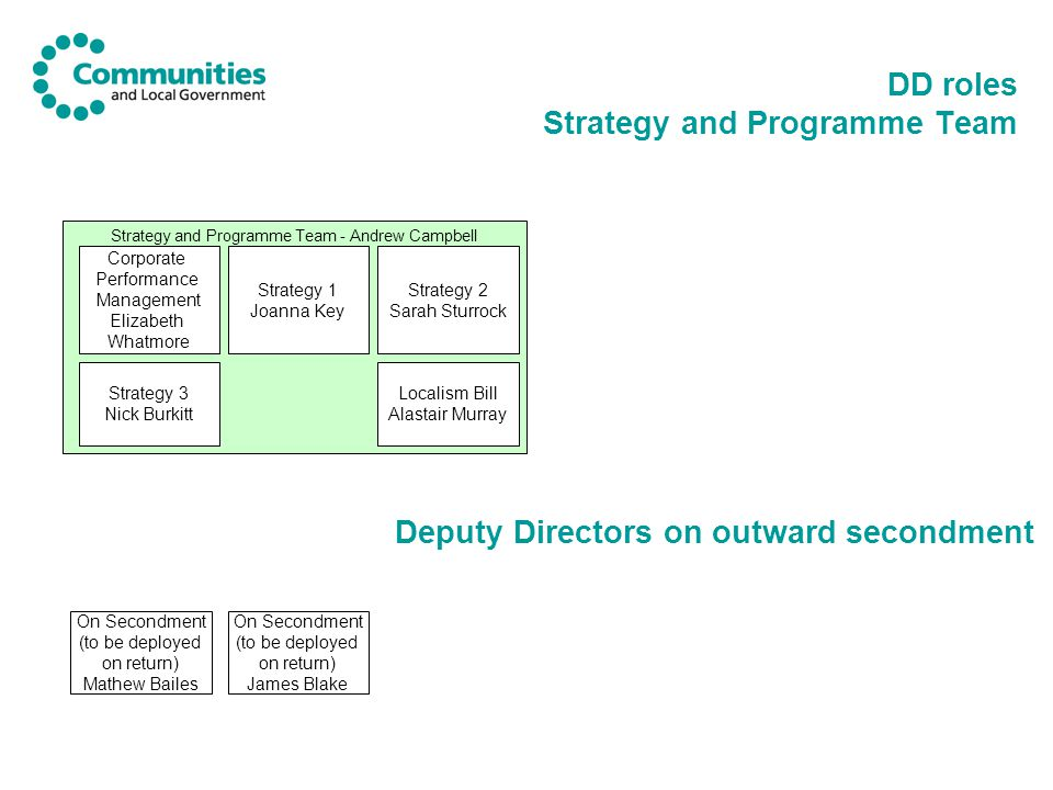 DD roles Strategy and Programme Team