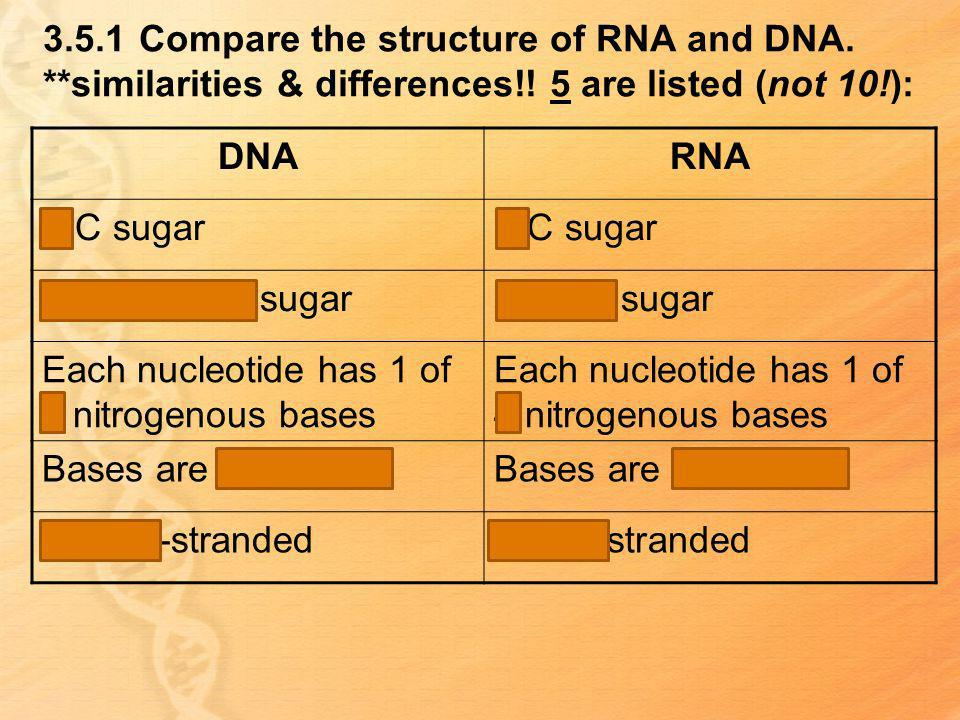 3. 5. 1. Compare the structure of RNA and DNA