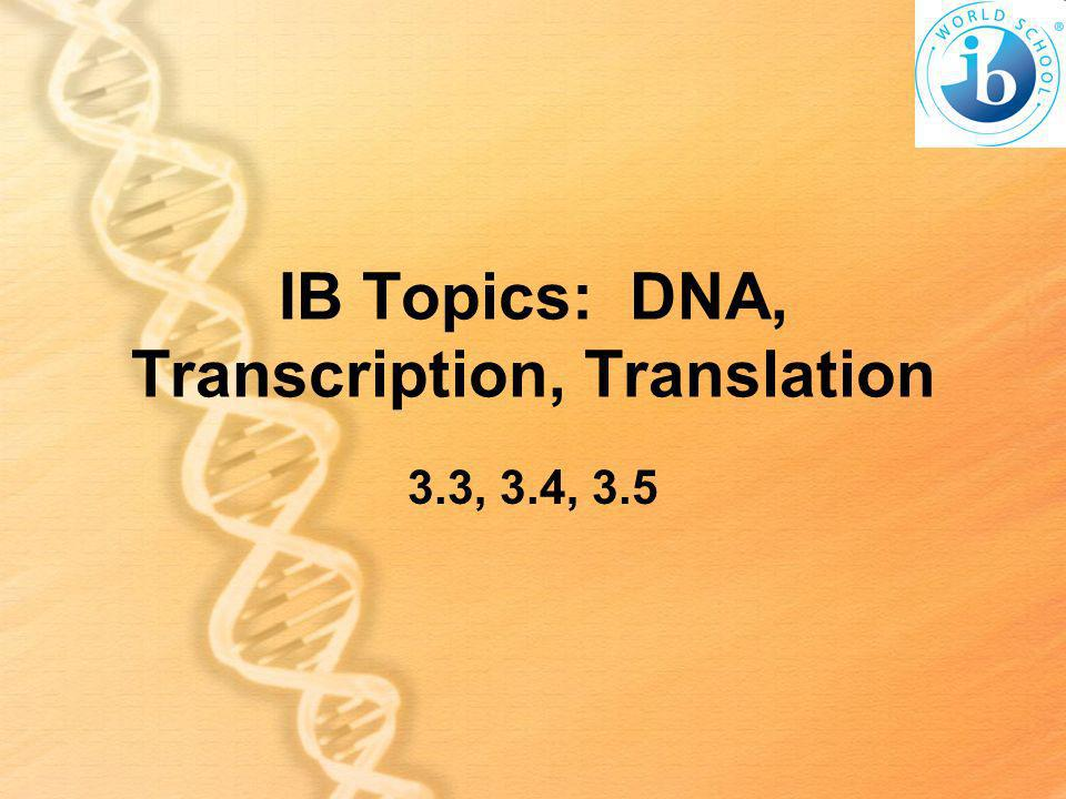 IB Topics: DNA, Transcription, Translation