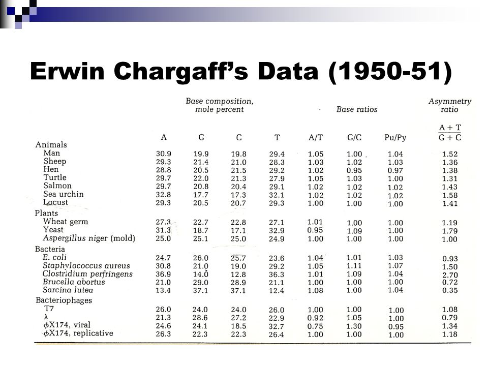 Erwin Chargaff's Data (1950-51)