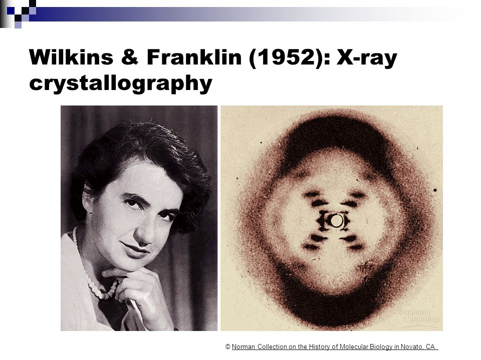 Wilkins & Franklin (1952): X-ray crystallography