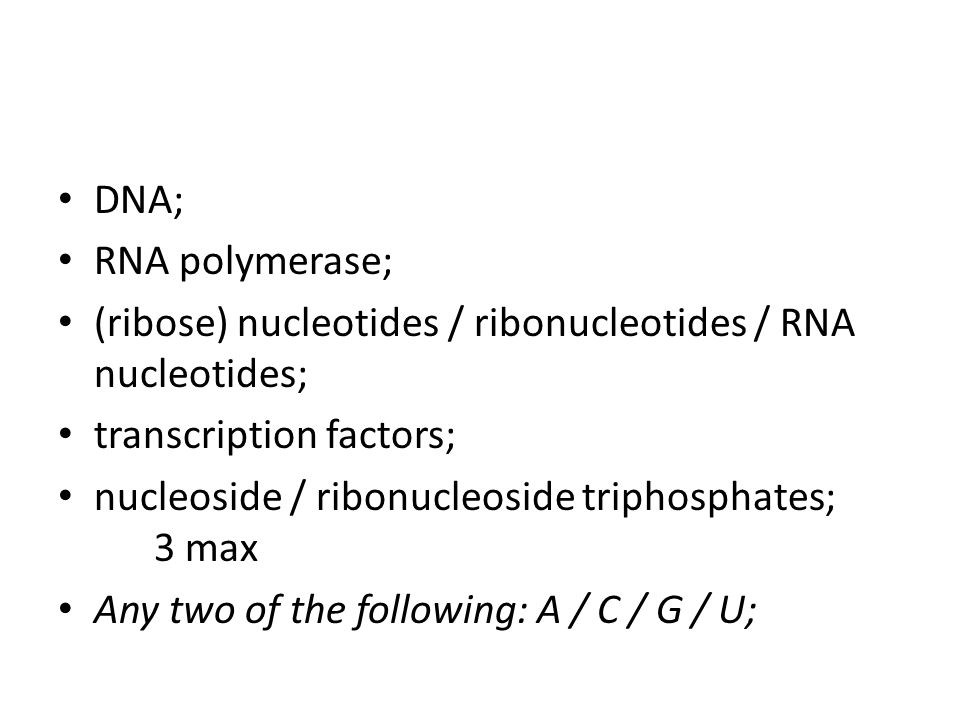 DNA; RNA polymerase; (ribose) nucleotides / ribonucleotides / RNA nucleotides; transcription factors;